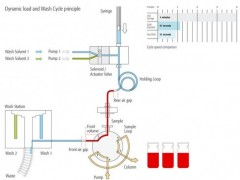 Dynamic Load & Wash Ablaufzyklus